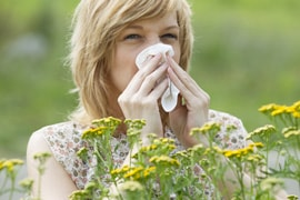 allergy treatment dallas